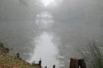 AR_brouillard (2)