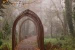 DS_brouillard