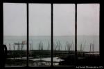 fenêtre-CO1