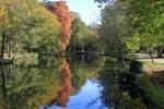 FP_Cyprès chauve Parc de Majolan Blanquefort