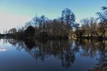 MLC_Parc de Majolan Blanquefort (2)