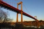 Bernard-pont d'Aquitaine