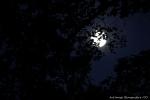 CO photo de nuit