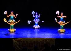 Téléthon 2016 - Gala de danse