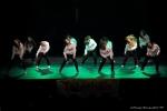 Téléthon 2016 - Gala de danse - FP (46)