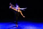 Téléthon 2016 - Gala de danse - FP (55)