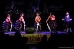 TELETHON 2016 - Opéra Rock Mozart - FP (19)