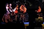 TELETHON 2016 - Opéra Rock Mozart - FP (50)