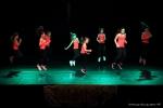 Téléthon 2016 - Gala de danse - FP (8)
