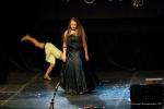 TELETHON 2016 - Opéra Rock Mozart - FP (65)