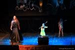 TELETHON 2016 - Opéra Rock Mozart - FP (69)