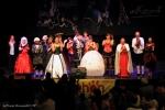 TELETHON 2016 - Opéra Rock Mozart - FP (95)